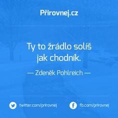 """""""Ty to žrádlo solíš, jak chodník."""" - Zdeněk Pohlreich #prirovnani #pohlreich #anosefe"""