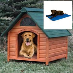 Spotty Wooden Insulated Dog House with Cooling Bed