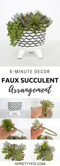 Make this fun and easy faux succulent arrangement in just 5 minutes. The perfect craft for those who love modern, minimal DIY decor. Succulent Display, Succulent Planter Diy, Succulent Landscaping, Succulent Centerpieces, Hanging Succulents, Small Succulents, Succulent Arrangements, Succulent Ideas, Succulent Care