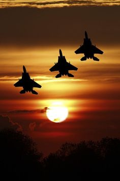 Plane and aviation pictures. Air Fighter, Fighter Pilot, Fighter Aircraft, Fighter Jets, Military Jets, Military Aircraft, Military Soldier, Airplane Fighter, Cool Photos