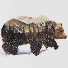 Image result for double exposure photography animals