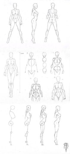 Aprender a dibujar personajes de anime  Drawings Anatomy and