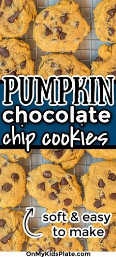 These are the best-ever Pumpkin Chocolate Chip Cookies! These yummy cookies are soft, melt in your mouth cookies that are perfect for fall! full of cozy cinnamon and nutmeg, you'll love this easy recipe. #pumpkin #pumpkin cookies #chocolatechip #cookies #