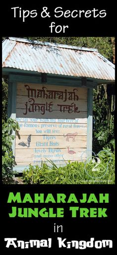 Everything you need to know about Maharajah Jungle Trek. Pin now and reference on your next Disney trip.