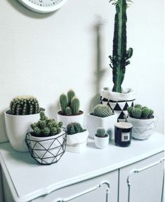 Luxury Small Cactus Ideas For Home Decoration. Here are the Small Cactus Ideas For Home Decoration. This post about Small Cactus Ideas For Home Decoration was posted  Deco Cactus, Cactus Decor, Plant Decor, Cactus Art, Cactus E Suculentas, Deco Nature, Decoration Plante, Cacti And Succulents, Cactus Plants