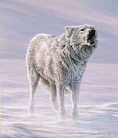 White Wolf: