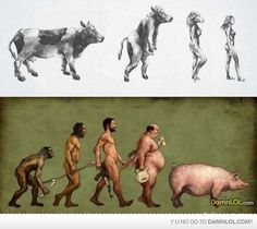 dont believe in evolution, but this is funny!