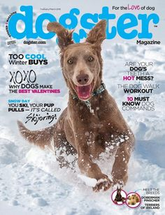 """A magazine """"for the love of dog."""""""