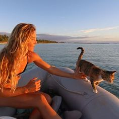 Liz Clark is traveling around the world on a sailboat along with her feline first mate. | This Woman And Her Cat Live In A Boat And Sail Around The World - BuzzFeed News