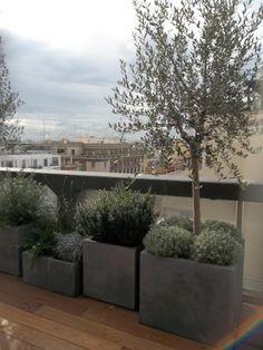 loft, Bari