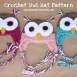 Crochet Owl Hat Pattern from Repeat crafter Me