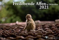 TBFOTO.DE Wandkalender 2021