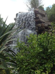 washington dc zoo 4th of july