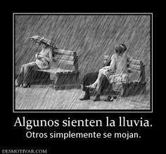 Algunos sienten la lluvia. Otros simplemente se mojan.