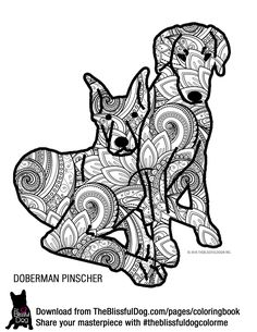 ENJOY COLORING this Doberman Pinscher Duo! Download all 60+ breeds from link below...