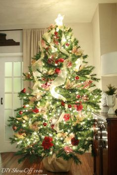 traditional Christmas tree