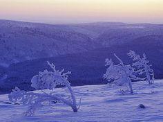 Lemmenjoen kansallispuisto. Kuva: Jouni Klinga