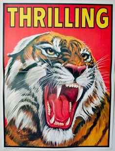 Vintage Circus Poster - 'THRILLING' Tiger