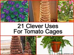 21 Clever �Other� Uses For Tomato Cages