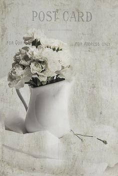 Be Still - Week 3 by Marilyn Gallas