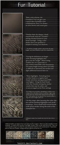 OUT OF DATE u: -Ignore typos- .-. This is a basic overview of how I work with fur. I've had a lot of questions and hopefully this answers them. I use about three layers for fur, and constantl...