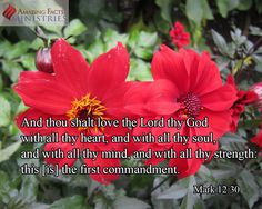"""Love the Lord """"And thou shalt love the Lord thy God with all thy heart, and with all thy soul, and with all thy mind, and with all thy strength: this is the first commandment."""" Mark 12:30"""