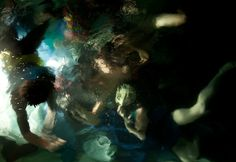 Photographer Captures Underwater Photos That Resemble Baroque Oil Paintings - DesignTAXI.com