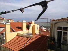 Appartement T2 / Lisboa, Misericórdia / Vendre / 135.000 € / Tlf. 215999995 Park, Lisbon, I Found You, Parks