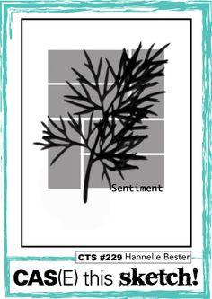 CAS(E) this Sketch #229