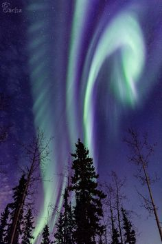 Aurora - Fairbanks, AK, USA