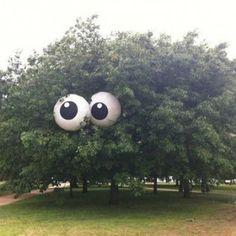 "Beach balls as eyes make it a ""scary"" tree"
