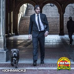 """John Wick 3 Gets A Working Title Ahead Of Filming John Wick: Chapter 3 has been given the working title """"Alpha Cop"""", now that the Keanu Reeves-fronted action thriller has entered pre-p. Keanu Reeves John Wick, Keanu Charles Reeves, John Wick Movie, Next Film, Liam Neeson, Chapter 3, New Trailers, Cinematography, Movies And Tv Shows"""