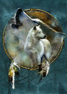 american Indian and the wolf spirt | Wolf Spirit Shield