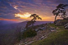 View from Mount Nebo, Arkansas   #South #Southern