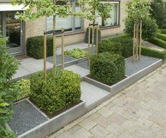 Front Garden Yard