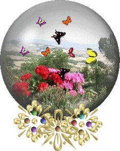 gif animate: il meglio del web Dream Pictures, Scenery Pictures, Nature Pictures, Daisy Wallpaper, Butterfly Wallpaper, Beautiful Butterflies, Beautiful Flowers, Little Nice Things, Butterfly Gif