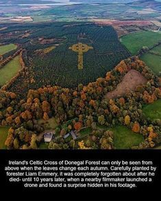 Ireland's Celtic Cross of Donegal Forest Ireland Facts, Irish Celtic, Celtic Art, Celtic Dragon, Irish American, Donegal, Ireland Travel, Beautiful Places, Scenery