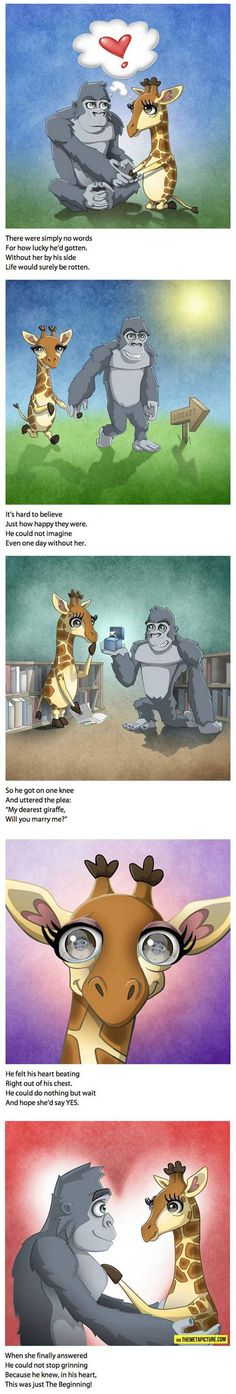 Cute proposal!  cool-book-proposal-monkey-giraffe