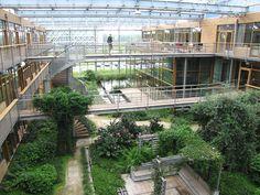 Les espaces verts, échappatoire urbain