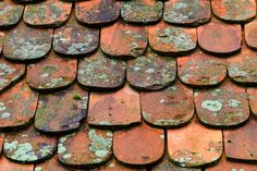 Salvaged from the rooftops of Eastern Europe comes Gather Co's exclusive range - Malina Antique European Terracotta Terracotta, Rooftops, Eastern Europe, Antiques, Tile, Spa, Range, Antiquities, Antique