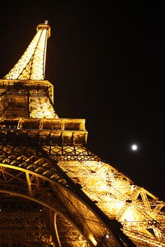 This one night in Paris...I took this awesome photo.
