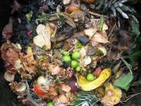 With more municipalities going to curbside recycling, running a compost heap isn't just for the crunchy set anymore. Here's how to know what belongs in the pile