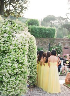 Fine Art Film Wedding Photographers in Tuscany Tuscan Wedding, Rustic Wedding, Bridesmaids, Bridesmaid Dresses, Wedding Dresses, Outdoor Ceremony, Beautiful Couple, Destination Wedding Photographer, Tuscany