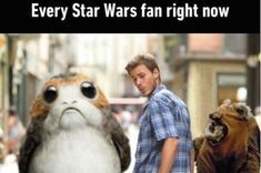 "14 Things Everyone Who's Obsessed With Porgs From ""Star Wars"" Will Relate To"