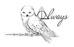 Owl Tattoo Design- A tattoo design for a friend, based on Hedwig from Harry Potter Hedwig Tattoo, Hp Tattoo, Tattoo Flash, Blade Tattoo, Stag Tattoo, Tattoo Quotes, Tattoo 2017, Tattoo Music, Tattoo Outline