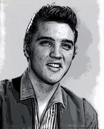 Elvis Drawing Print ** Free Shipping **