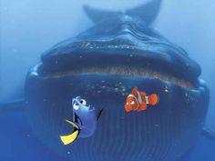 "Media Darlings: Disney-Pixar's ""Finding Nemo in Go, Fish! Disney Pixar, Walt Disney, Disney Love, Disney Magic, Disney Characters, Funny Disney, Rocket Power, Toy Story 3, Childhood Movies"