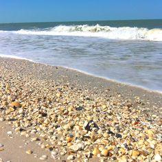 Barefoot Beach- Bonita Springs, Fl - omg!  I would love to seashell hunt here!