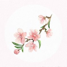 【foxtly】さんのInstagramをピンしています。 《Happy Lunar New Year ! Wish you all love and happiness, yadi yadi yada :P #lunarnewyear #tet #illustration #floral #sakura #cherryblossoms》