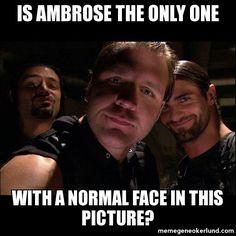 dhield memeswwe   ... The Shield Reason   Meme Gene Okerlund - WWE Wrestling Meme Generator
